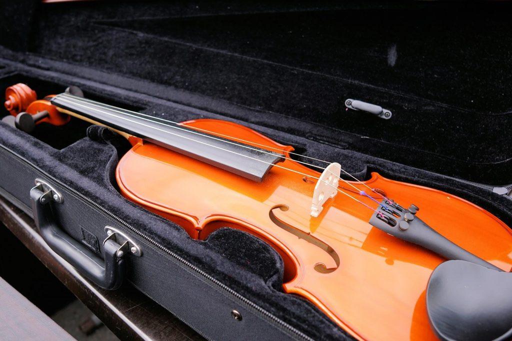 custodia-per-violino