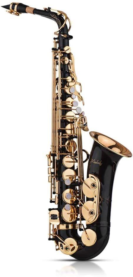 sassofono-Muslady